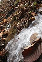 立岩☆凍る湧水