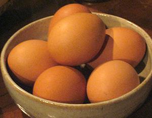 榛名の玉子☆卵太郎