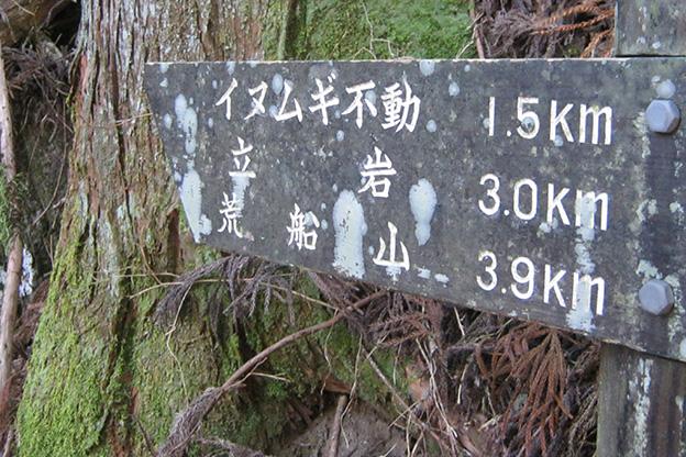 イヌムギ不動☆1.5km