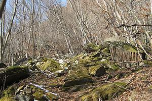 南牧村イモリの滝