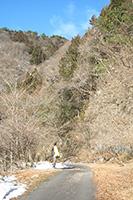 南牧村象が滝