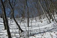 素晴らしい雪景色♪