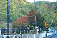 群馬県☆上野村